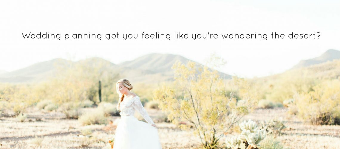 Arizona wedding planner MIRA events